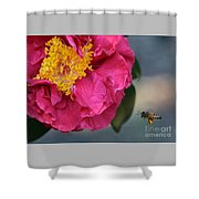 Camellia With Bee Shower Curtain