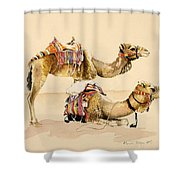 Camels From Petra Shower Curtain