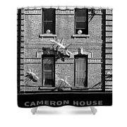 Cameron House 2b Shower Curtain