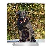 Camouflage Labrador - Black Dog - Retriever Shower Curtain
