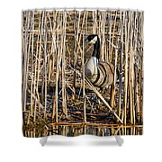 Camouflaged Canada Goose Shower Curtain