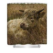 Camouflaged Cow Shower Curtain