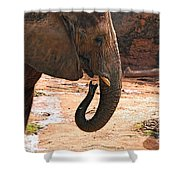 Camouflaged Elephant Shower Curtain