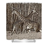 Camouflaged X Sepia Shower Curtain