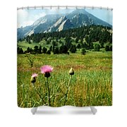 Chautauqua Wildflowers Boulder Shower Curtain
