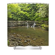 Campbell Falls 6 Shower Curtain