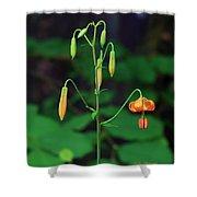 Campground Flower Shower Curtain