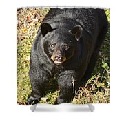 Can I Come Up? Shower Curtain