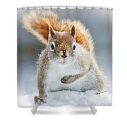 Can I Have Some More? Shower Curtain