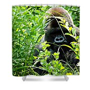 Can I Help You? Shower Curtain