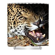 Can You Hear Me Now? Shower Curtain