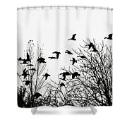 Canada Geese Flight Silhouette Shower Curtain
