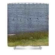 Canada Geese Panorama-signed-8x38 Shower Curtain