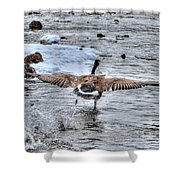 Canada Goose - The Runway Shower Curtain