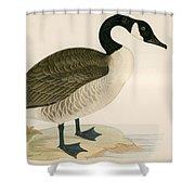 Canada Goose Shower Curtain
