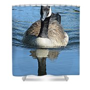 Canada Goose Reflecting Shower Curtain
