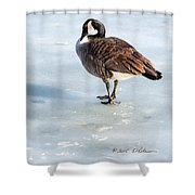 Canada Goose Web Prints Shower Curtain