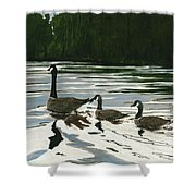 Canadas On Wilson Lake Nc Shower Curtain