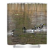 Canadian Geese Shower Curtain