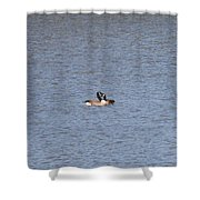 Canadian Geese Love Shower Curtain