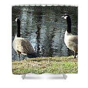 Canadian Geese On Spaulding Pond Shower Curtain