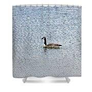Canadian Goose 2 Shower Curtain