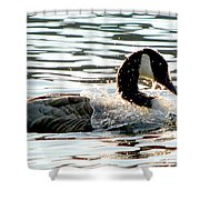 Canadian Goose Wash Shower Curtain