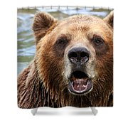 Canadian Grizzly Shower Curtain