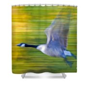 Canadian In Flight Shower Curtain