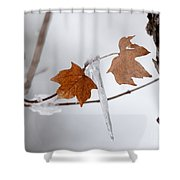 Canadian Winter Eh? Shower Curtain