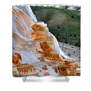 Canary Spring Shower Curtain