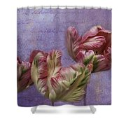 Cancan Parrot Tulips Shower Curtain