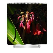 Candelabra  Flower  Shower Curtain
