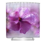 Candice Shower Curtain
