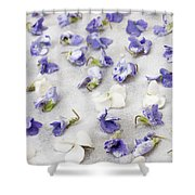 Candied Violets Shower Curtain