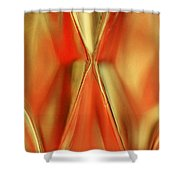 Candle Holder 12 Shower Curtain