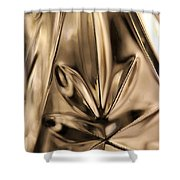 Candle Holder 4 Shower Curtain