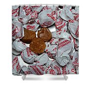 Candy - Coconut Butterscotch Kisses - Sweets Shower Curtain