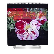 Candy Cane Flower-2 Shower Curtain