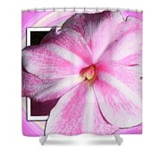 Candy Cane Flower Shower Curtain