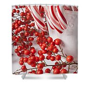 Candy Canes And Red Berries Shower Curtain