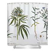 Cannabis And Flax Shower Curtain