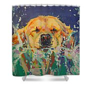 Cannonball Shower Curtain