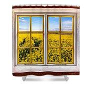Canola Canola Shower Curtain