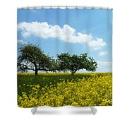 Canola Shower Curtain