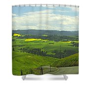 Canola Country Road Shower Curtain