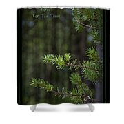 Can't See The Forest For The Trees Shower Curtain