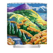 Can't- See The Forest Thur The Woman Shower Curtain