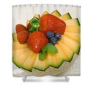 Cantaloupe Breakfast Shower Curtain