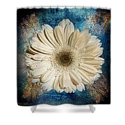 Canvas Still  Shower Curtain